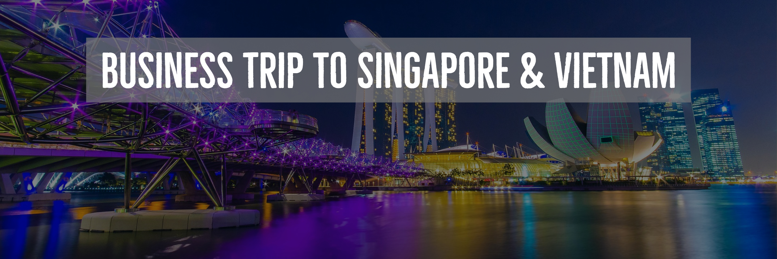 Business Trip to Singapore and Vietnam, Fall 2018